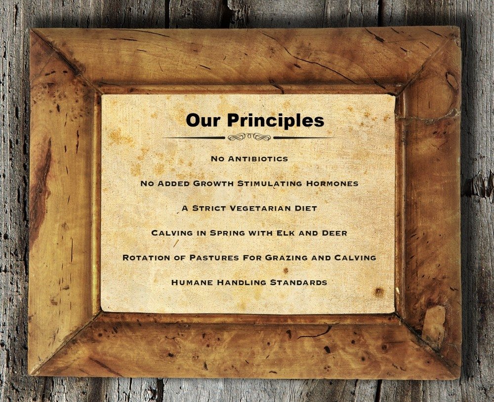 Old woden art frame with 6 company principles